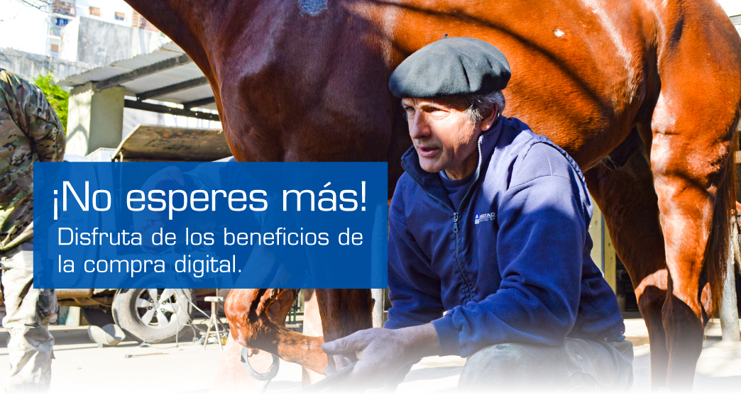 Banner-E-commers-AR-Banner-Principal-Movil-1